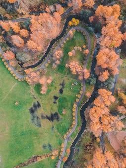 Vista aerea sul parco di autunno nella periferia della città. san pietroburgo, russia.