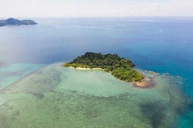 Vista aerea superiore delle onde dell'oceano, spiaggia e costa rocciosa e bellissima foresta.