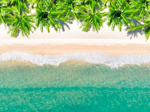 Vista aerea vista dall'alto bella spiaggia d'attualità con palme da cocco di sabbia bianca e mare. vista dall'alto spiaggia vuota e pulita.