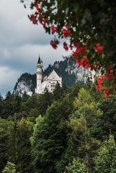 Vista dal villaggio di hohenschwangau sul castello di neuschwanstein. in primo piano i fiori rossi