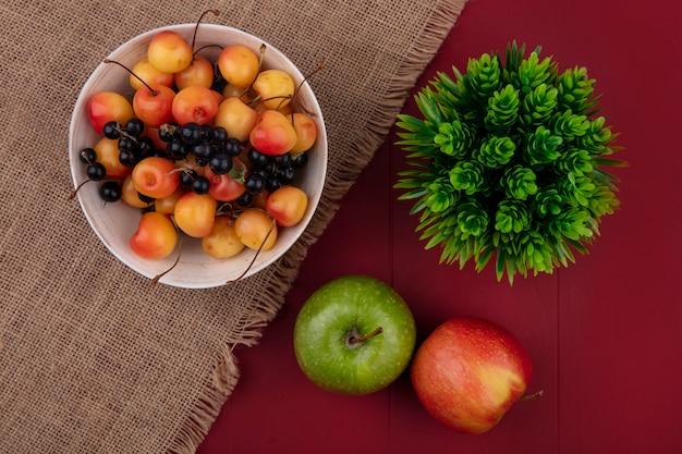 Vista dall'alto bianco ciliegia con ribes nero in una ciotola con le mele su un tavolo rosso