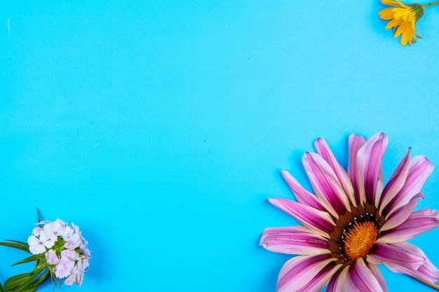 Vista dall'alto copia spazio viola margherita con fiore giallo e bianco su sfondo blu