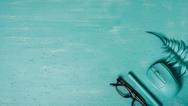 Vista dall'alto degli occhiali; penna; topo; felce su sfondo turchese