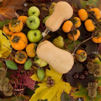 Vista dall'alto dei frutti dell'autunno