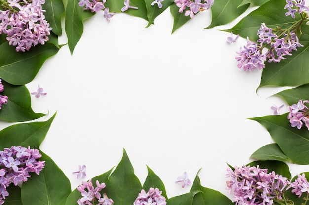 Vista dall'alto del bellissimo concetto di cornice lilla