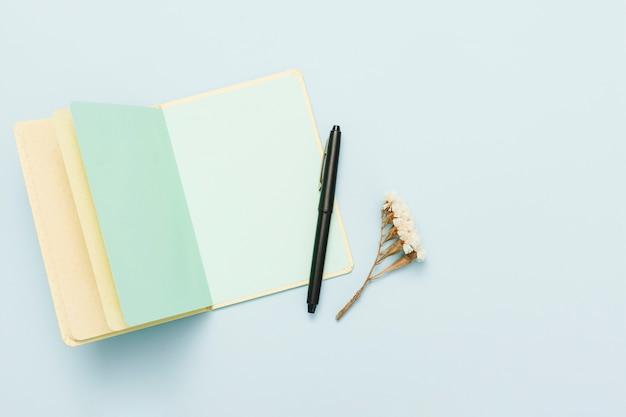 Vista dall'alto del libro aperto con una penna