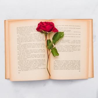 Vista dall'alto del libro e rosa