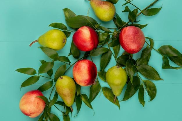 Vista dall'alto del modello di frutti come pera e pesca con foglie su sfondo blu