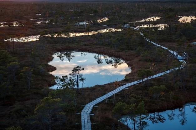 Vista dall'alto della palude in lettonia. laghi sollevati della palude in autunno al tramonto. sentiero costiero nel parco nazionale di kemeri.