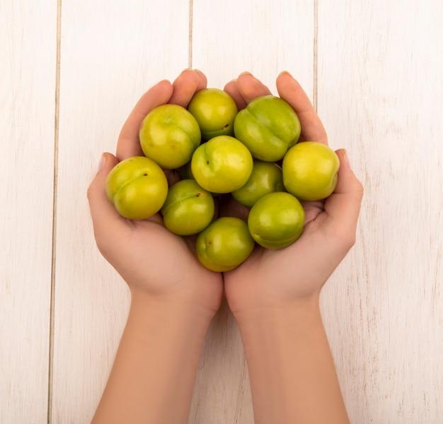 Vista dall'alto delle mani femminili che tengono prugna ciliegia verde su un fondo di legno bianco