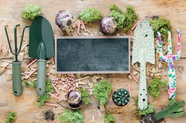 Vista dall'alto di attrezzature da giardinaggio; tappeto erboso; pianta di cactus; gesso; e ardesia vuota sul tavolo di legno marrone