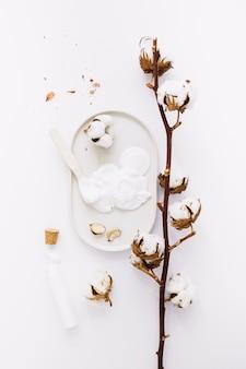 Vista dall'alto di crema idratante e ramoscello di cotone su sfondo bianco