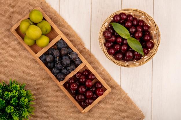 Vista dall'alto di deliziose ciliege rosse su un secchio con prugna di ciliegia sloesgreen su un panno di sacco su uno sfondo bianco