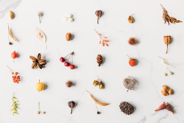 Vista dall'alto di frutti di bosco autunnali, infiorescenze, orecchini di acero e tiglio, castagno spinoso, nocciole, ghianda, cono, lampone, coni di luppolo su sfondo di marmo bianco