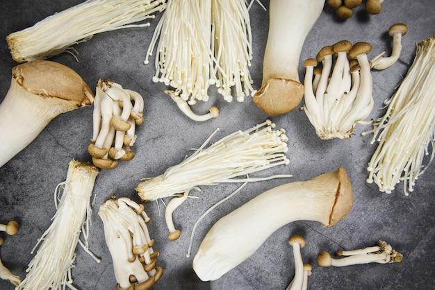 Vista dall'alto di funghi