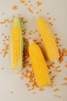 Vista dall'alto di pannocchie di mais con semi di mais sulla superficie bianca