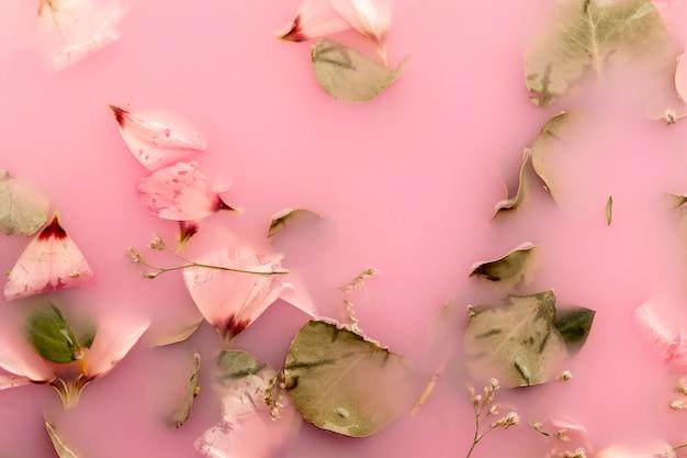 Vista dall'alto di petali di rosa in acqua di colore rosa