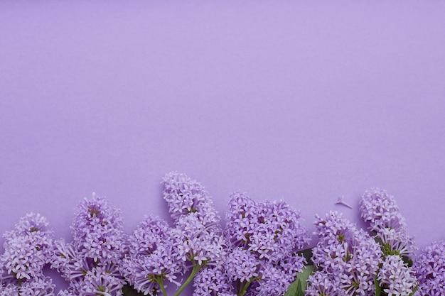 Vista dall'alto di posa fiori lilla sdraiato sul tavolo, la primavera è venuto, copia spazio viola sfondo. fiore lilla, cosmetici primaverili per viso e mani