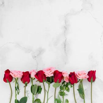 Vista dall'alto di rose primaverili con copia spazio e sfondo di marmo