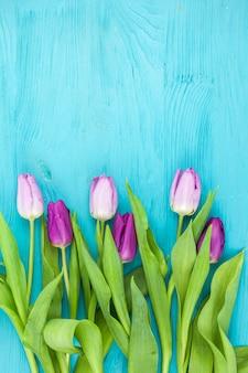 Vista dall'alto di tulipani primavera fresca sul tavolo colorato turchese
