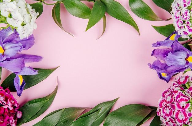 Vista dall'alto di una cornice fatta di fiori viola scuro viola iris garofano turco e rucus su sfondo rosa con spazio di copia