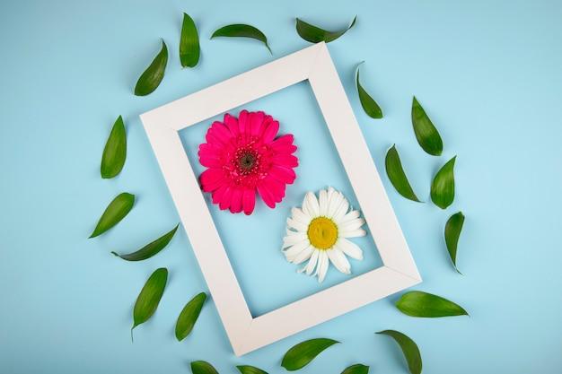 Vista dall'alto di una cornice vuota con il fiore rosa della gerbera di colore con la margherita e le foglie del ruscus su fondo blu