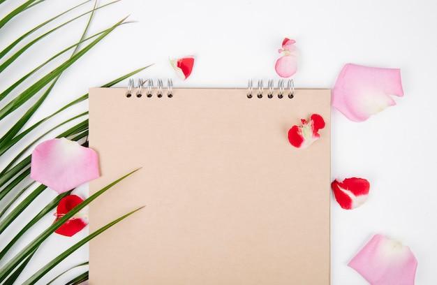Vista dall'alto di uno sketchbook e graffette con una foglia di palma e petali di fiori rosa sparsi su sfondo bianco