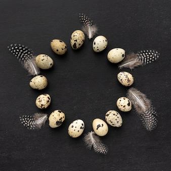 Vista dall'alto di uova di quaglia cornice circolare