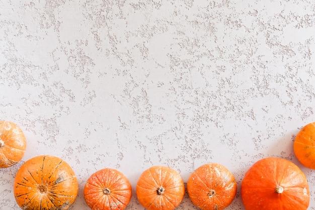 Vista dall'alto di zucche diverse, foglie di acero su sfondo di tabella