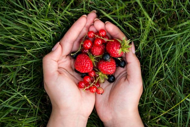 Vista dall'alto mani che tengono i frutti