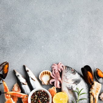 Vista dall'alto mix di frutti di mare con copia-spazio