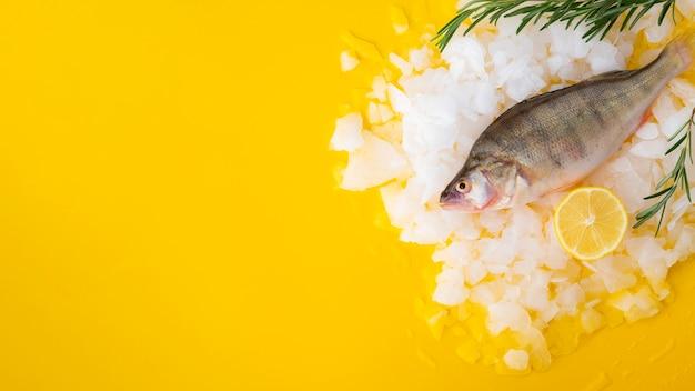 Vista dall'alto pesce fresco con cubetti di ghiaccio e limone