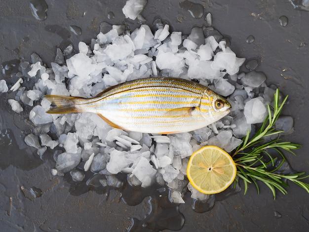Vista dall'alto pesce fresco su cubetti di ghiaccio