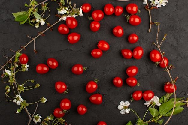 Vista dall'alto pomodori ciliegia rossi freschi maturi sullo sfondo scuro