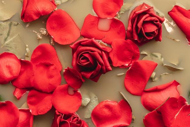 Vista dall'alto rose rosse in acqua di colore marrone