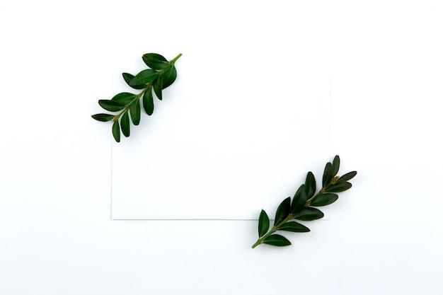 Vista dall'alto su un foglio di carta e un ramoscello verde con foglie. immagine e copia dell'eroe
