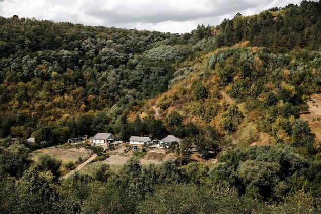 Vista dall'alto sulle case di campagna tra colline con foreste. piccolo villaggio nel cuore della natura.