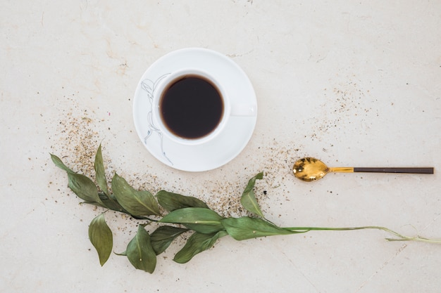 Vista dall'alto tazza di tè con ramo