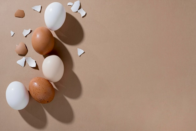 Vista dall'alto uova di gallina fresche