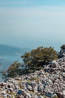 Vista dalla montagna vicino a kotor, montenegro