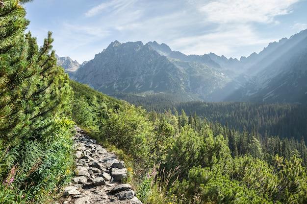 Vista degli alti monti tatra dal sentiero escursionistico.
