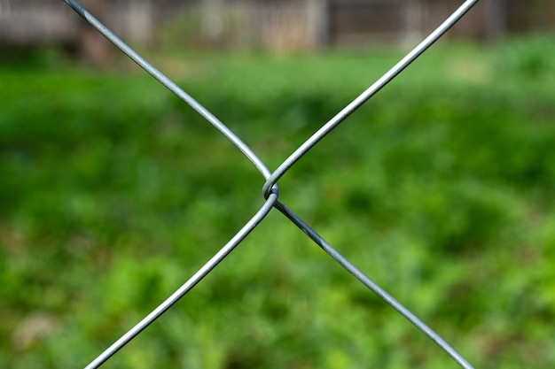 Vista del campo di erbe infestanti attraverso la rete.