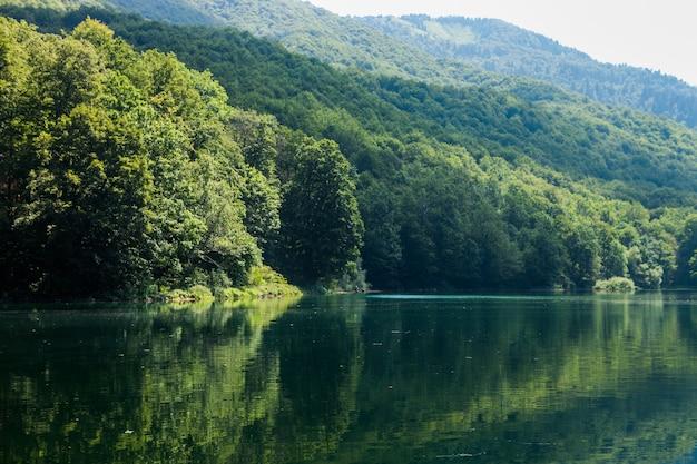 Vista del lago biogradsko nel parco nazionale biogradska gora nel montenegro. popolare destinazione turistica con foreste vergini e splendide montagne.