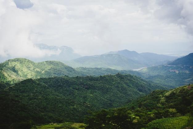 Vista del paesaggio di montagna e foresta pluviale.