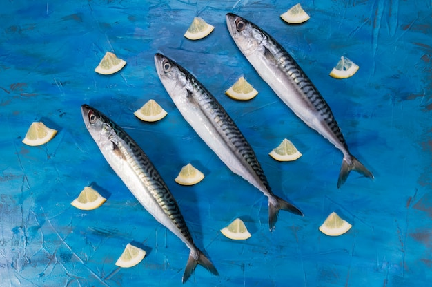 Vista del primo piano del pesce sano fresco crudo crudo dello sgombro