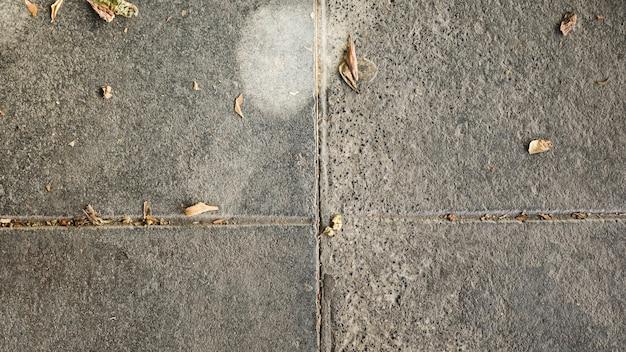 Vista dell'angolo alto del pavimento di calcestruzzo del cemento con le foglie asciutte
