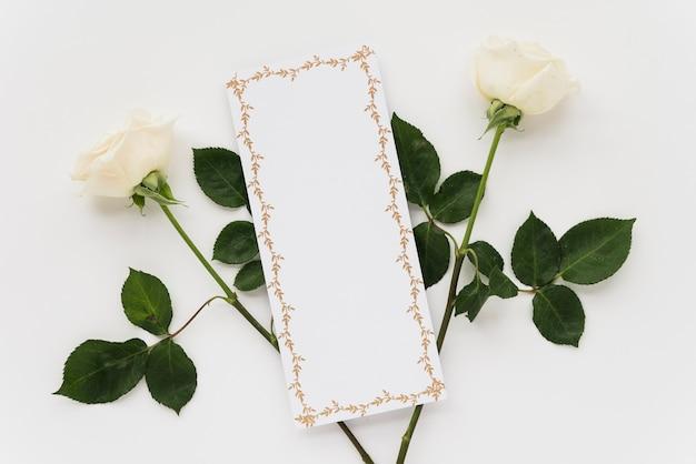 Vista dell'angolo alto della carta in bianco con due rose su fondo bianco