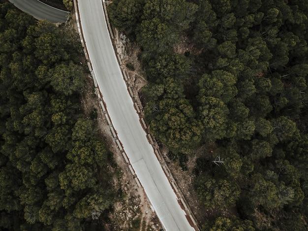 Vista dell'angolo alto della strada vuota nel paesaggio della foresta