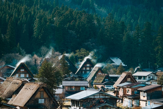 Vista dell'angolo alto di sirakawago e della foresta verde, gifu, giappone. il famoso giro turistico del patrimonio