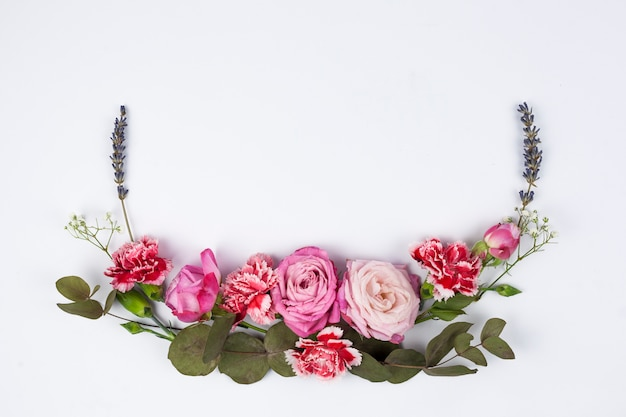 Vista dell'angolo alto di vari fiori freschi sulla superficie di bianco